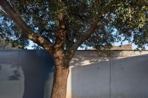 Ancin 28 Arquitectos en Navarra y País Vasco